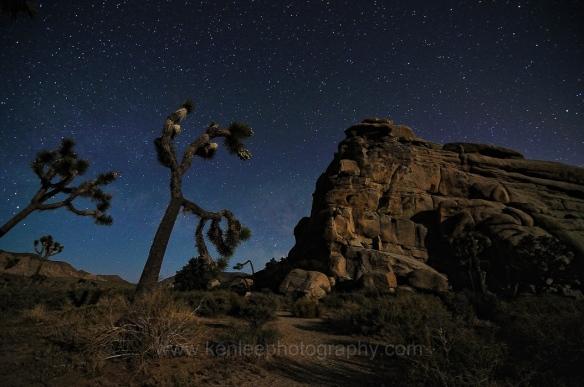 Hidden Valley Nights
