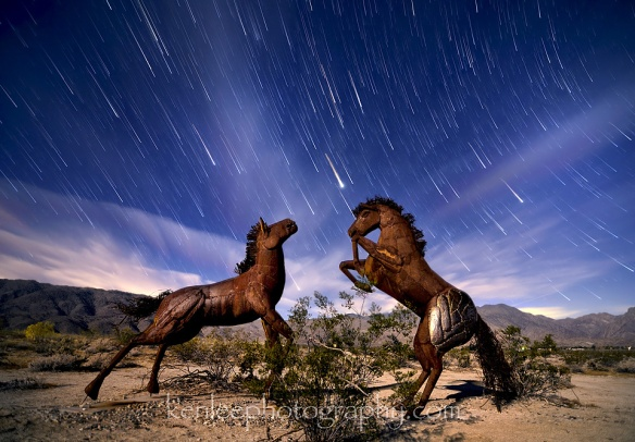 startrails-horses-27min-30sf28iso400-960px