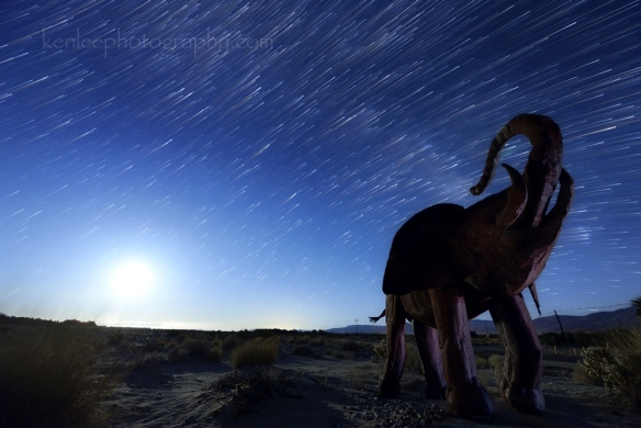 The sculpture of the elephant was created by Ricardo Breceda. The camera is facing more or less to the east. This 37 minute long exposure star trails photo shows the perceived movement of the stars in the night sky. And it also shows the trail of the moon! Title: Babar Begins His Lonely Luna Trek (1595) Photo: Ken Lee Photography Info: Nikon D610, AF-S Nikkor 14-24mm f/2.8G ED lens. Location: Borrego Springs, CA USA