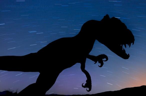 8513kenlee_borregosprings-2015-03-20-2346-872sf45iso200-dinosaurstartrails-silhouette-D7000-1000px