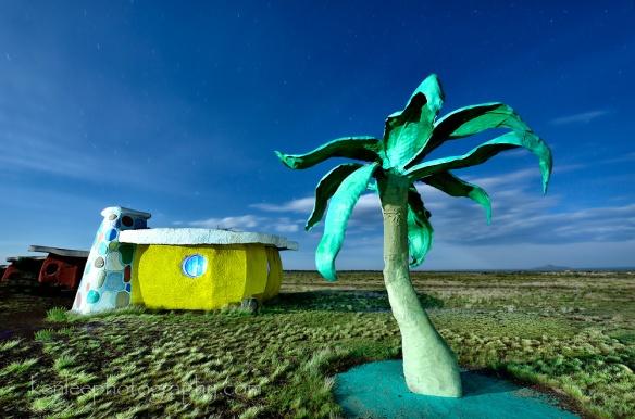 6770kenlee-2015-07-01-0304_arizona-bedrockcity-palmtree-lightpainting-155sf8iso200-1000px