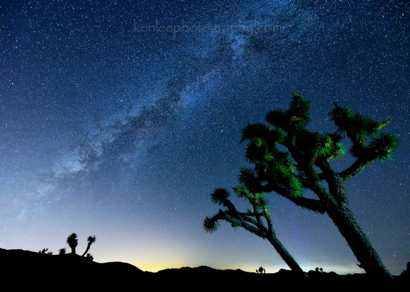 4554_kenlee_2016-09-04_0016_joshuatree_cap-rock_20sf28iso4000-milky-way_1000px